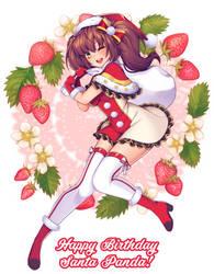 Santa girl - Birthday gift.
