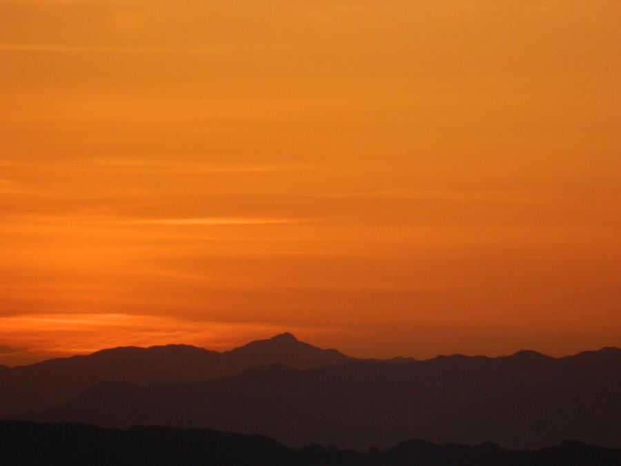 Orange In The Morning by bluedragoneye