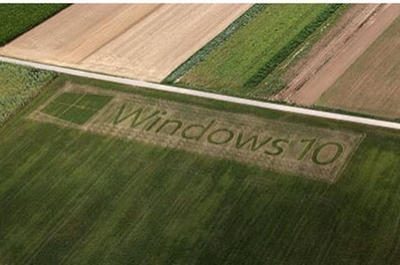 I hear Windows 10 is doing well in the field.