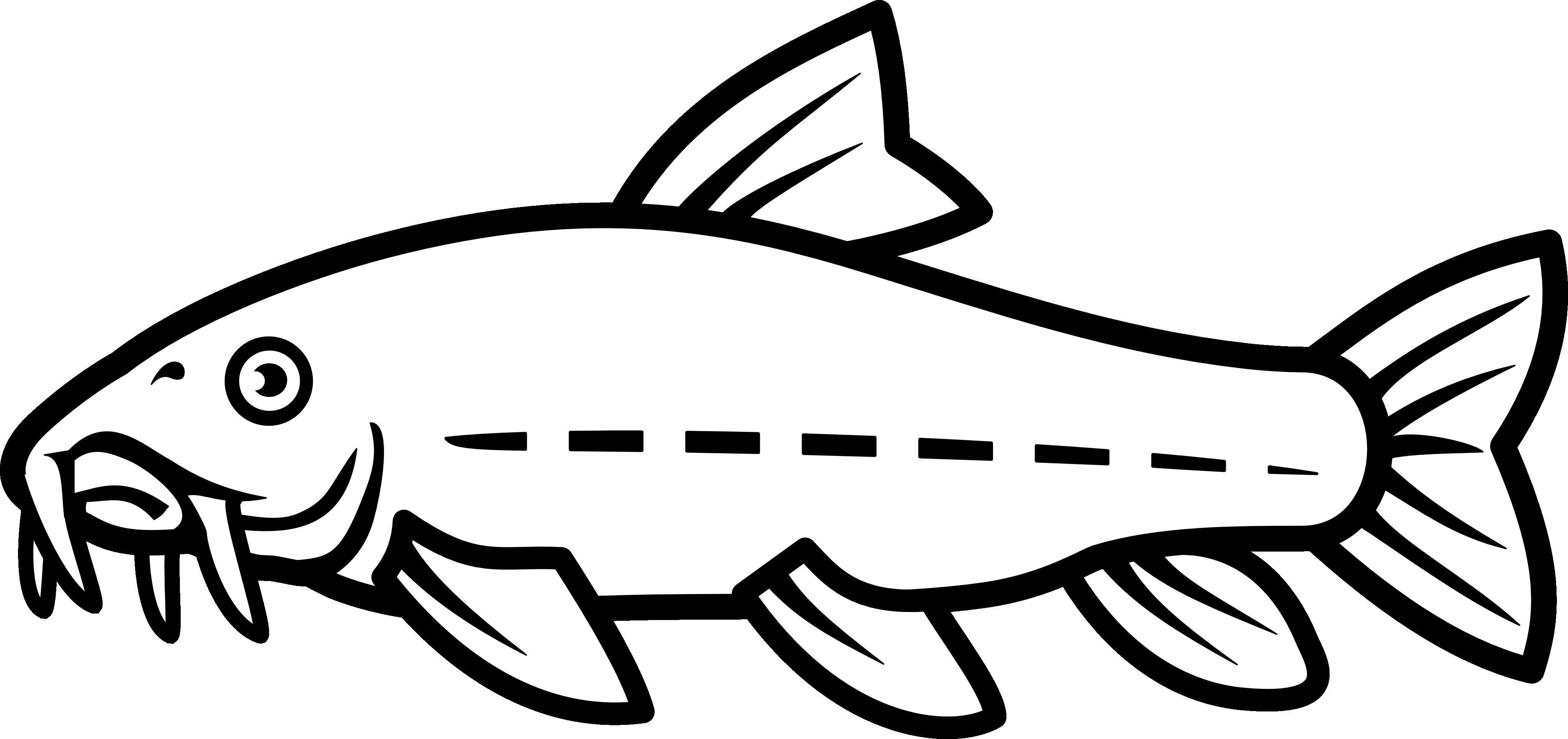 Catfish Vector by nico-e on DeviantArt