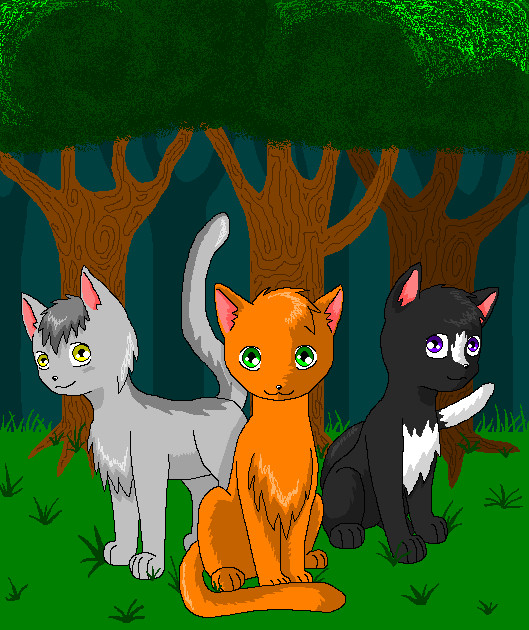 Into The Wild Graypaw Warriors: Warriors Into The Wild By Silverlionwolf On DeviantART