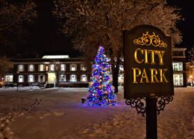 City Park Christmas Tree