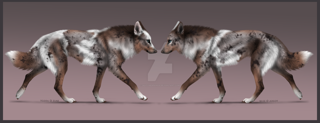 Wolf Adoptable - CLOSED by GlitchedPanda