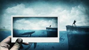 Fishing Polaroid