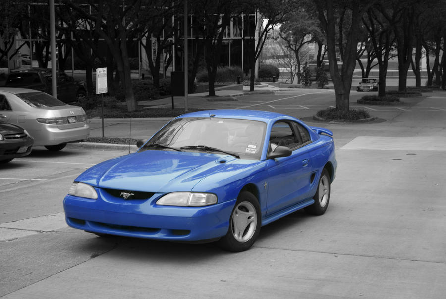 Blue Mustang by Linkdb