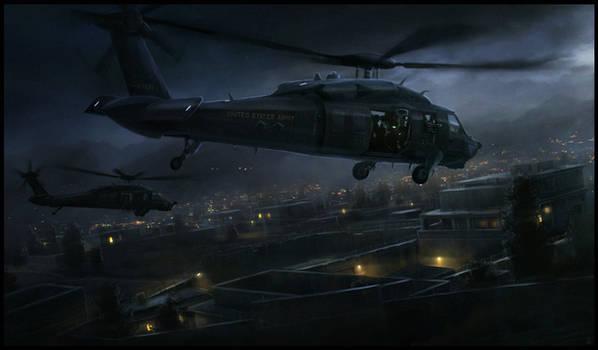Blackhawk on the Hunt