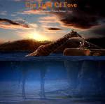 The Light Of Love sm