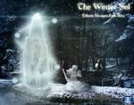 The Winter Sol