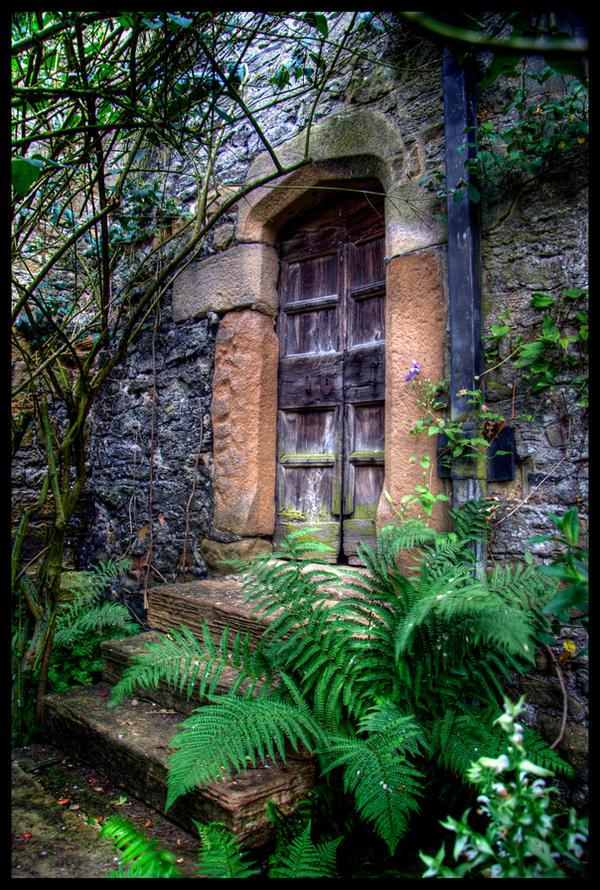 Secret Doorway by Megglles