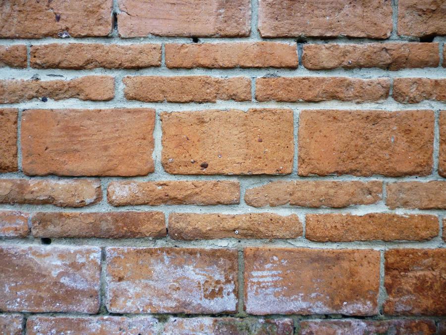 Muro de Ladrillo brick wall by malkarma