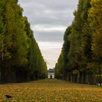 Herrenhausen Gardens in Autumn by stromstoerung