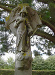 Angel in a graveyard 3