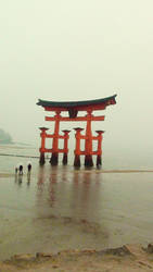 The floating Torii gate