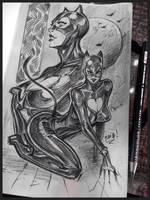 Catwoman Moleskine sketch by reiq