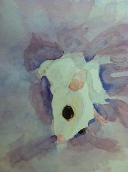 Watercolor Jayne