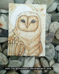 [ACEO] coffee owl