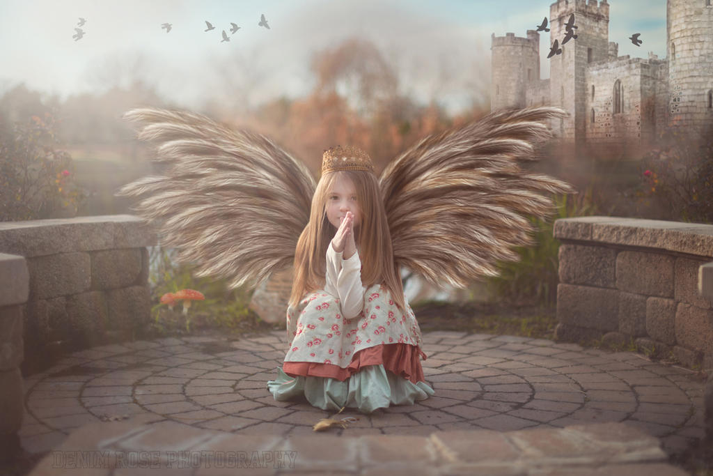 Life in flight by daisygirl4
