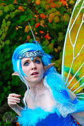 The Fairy named Navi.