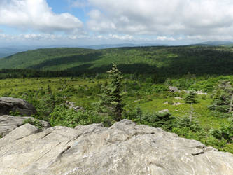 Mount Rogers - View from Appalachian Trail 9 by Sneas