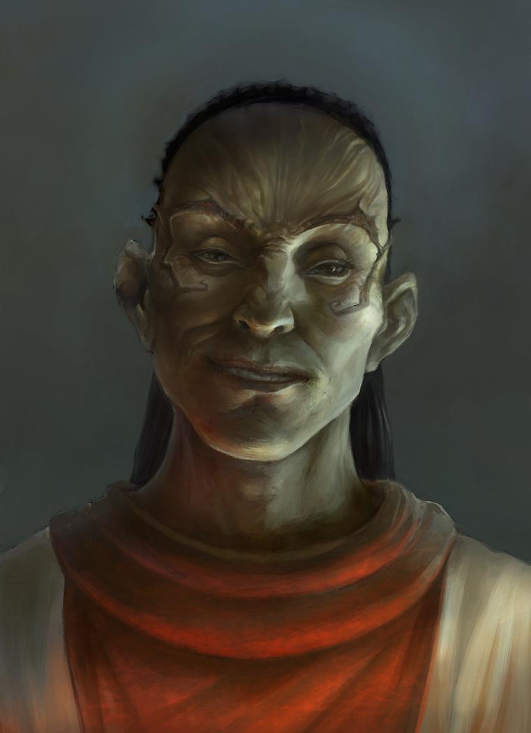 the portrait by zalas