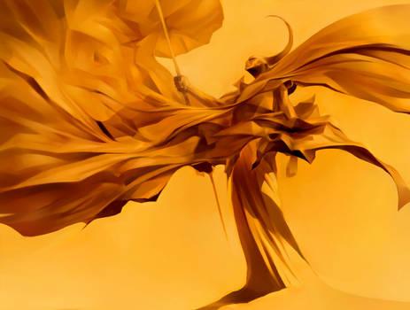 Orange Revolution -II attempt-