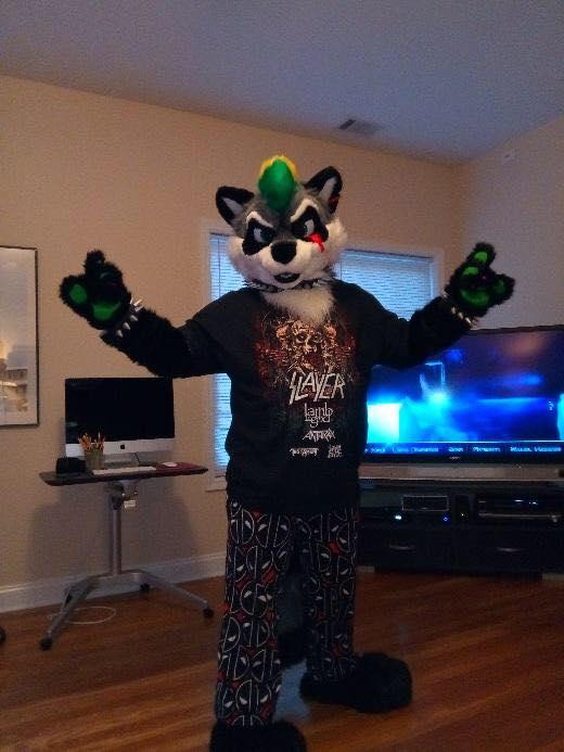 manic the raccoon by raccoonoverlord