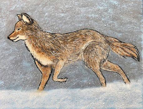 Snowfall in Early Spring series #2 - Coyote