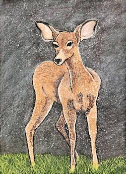 Snowfall in Early Spring series #1 - Deer