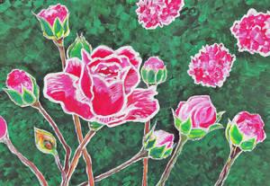 Pink Rosebush
