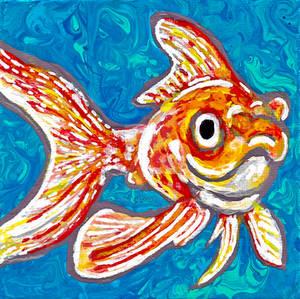 Time-Lapse: 2nd Goldfish