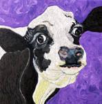 Time-Lapse: Bessie