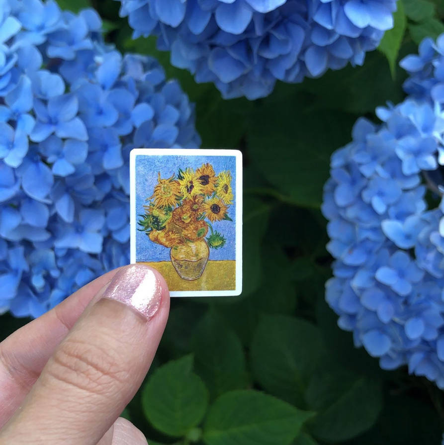 Sunflower Pic Copy