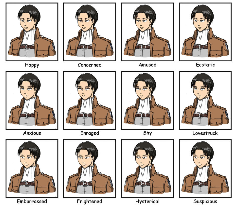 The Many Expressive Faces of Captain Levi by theApocrypha