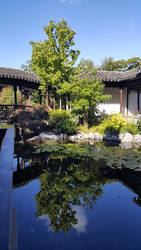 Lan Su Chinese Garden by theApocrypha