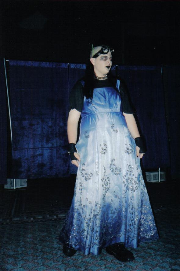 The Dress 1