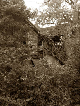 The House 1