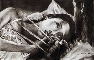 The Wolverine by tengari