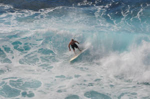 Hawaii Surfer Stock 1
