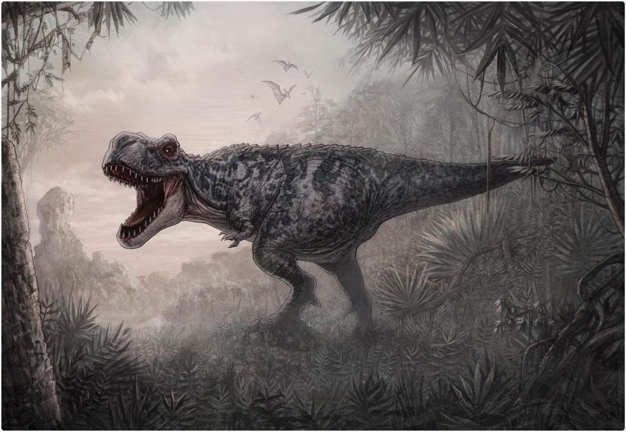 Tyranosaurus by AlexPerkins