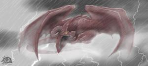 Red Sky Dragon