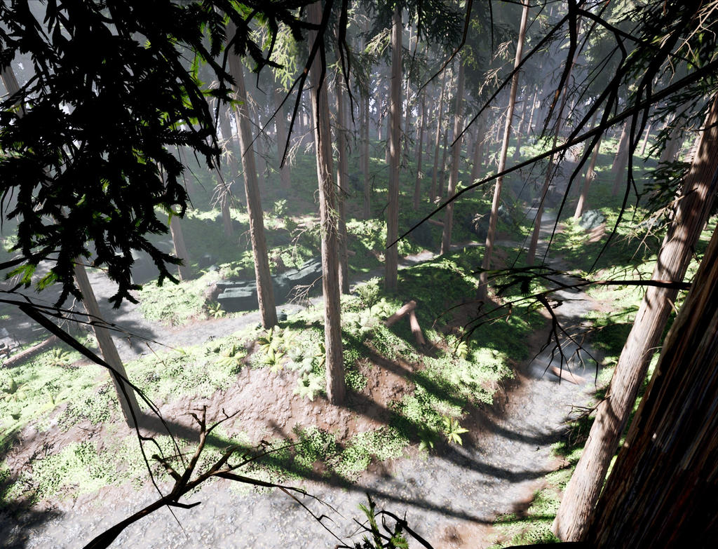 WW2 Forest (Top) - Unreal Engine by JacopoColangelo on
