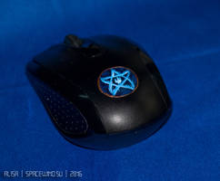 alisa DSC 7025 mouse by SivaKotka