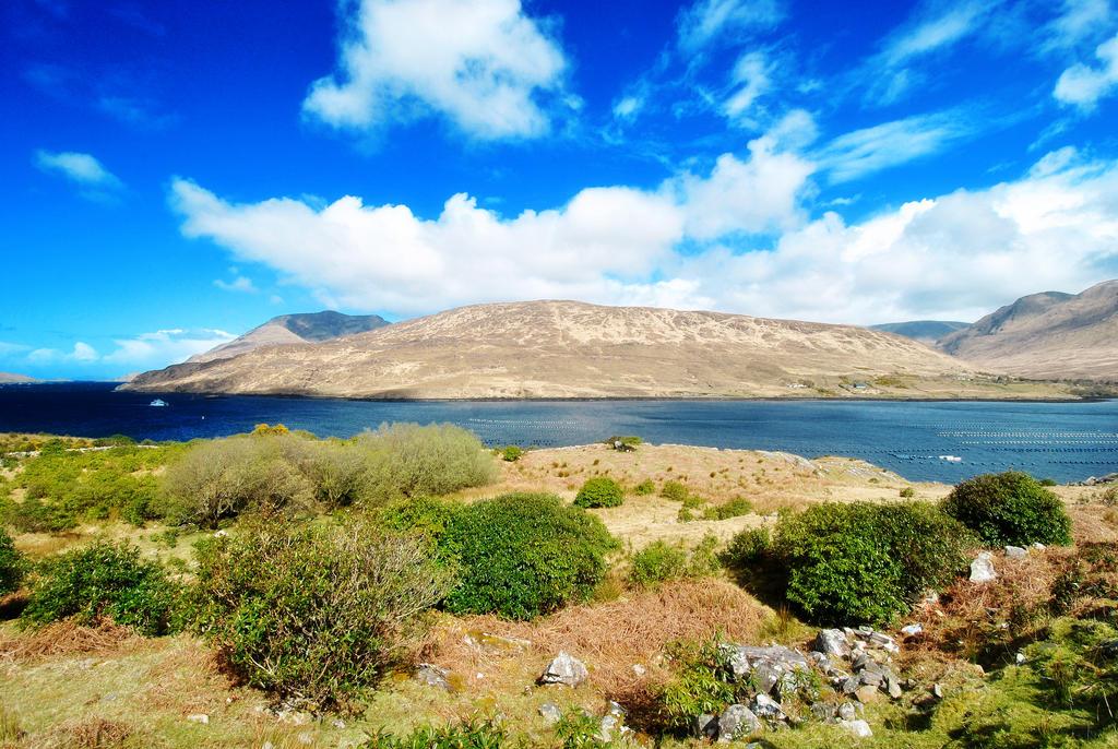 Connemara National Park II by anna-hellmeister