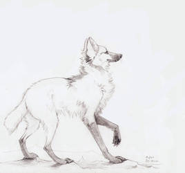 Maned wolf by Muflee