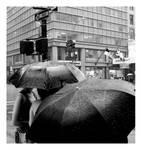 rain in bw by dontW8
