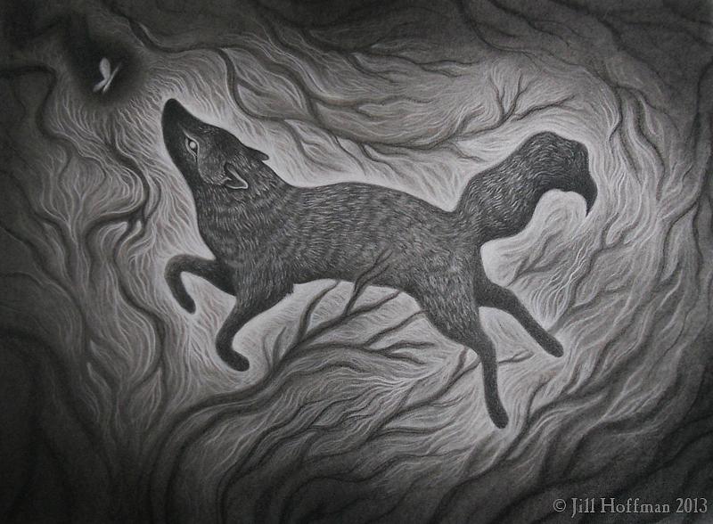 The Dark Run by JillHoffman