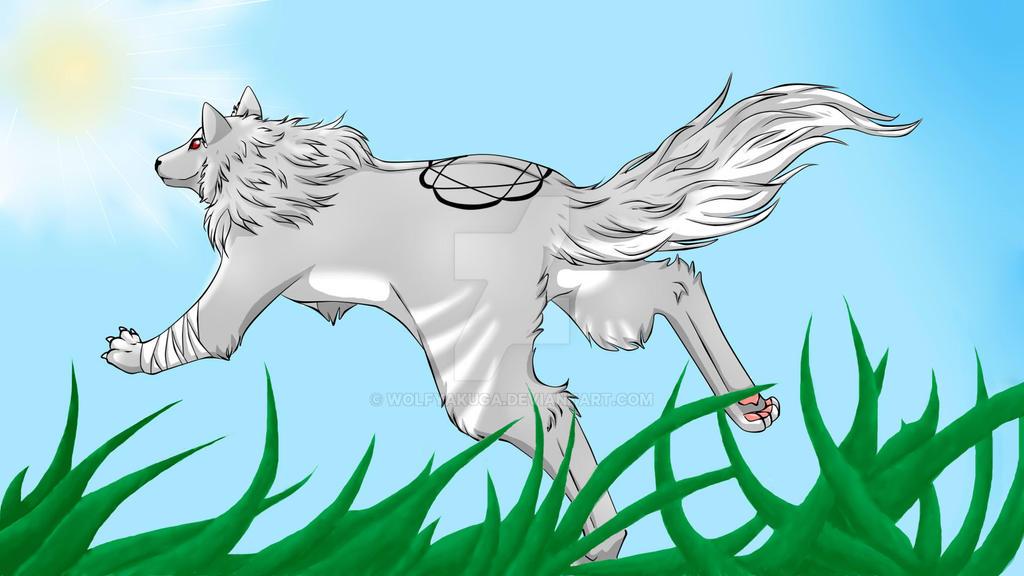 I'll follow the sun... by WolfYakuga