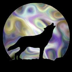 Wolf Shadow-3