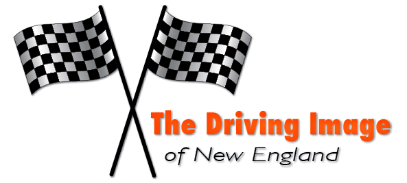 The Driving Image Sticker 3 by 3ducksinatub