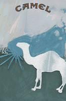 Camel by kspudw